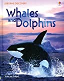 Whales and Dolphins (Discovery Program) (0794503160) by Davidson, Susan