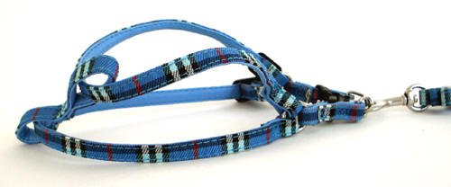 Pet Harness Set & Leash (Blue Big) NEW
