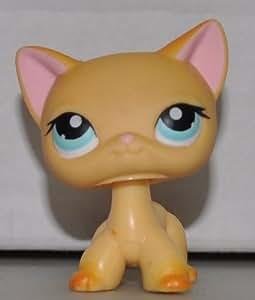 Amazon Com Lps Cats