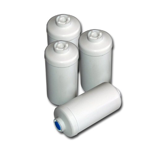 Berkey PF-4 Fluoride/Arsenic Replacement Filters, 4-Pack - Fits Ceramic