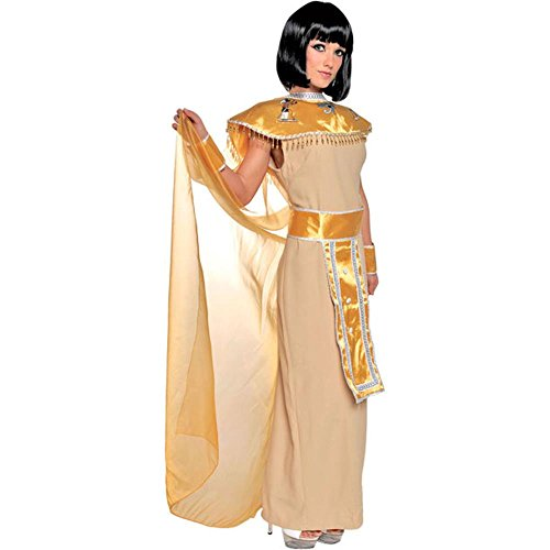 Adult Egyptian Goddess Costume (Size: Small 6-8)