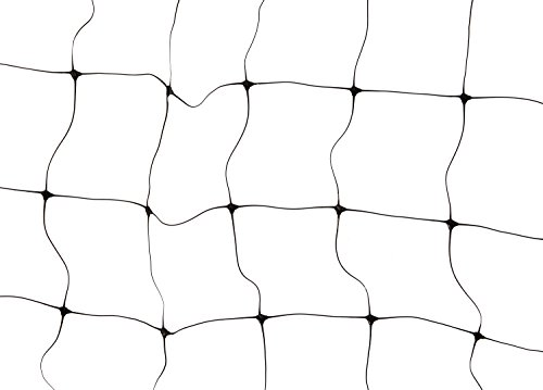 Ross 16301 12-Foot x 6-Foot Trellis Netting, Black (Trellis Wire compare prices)