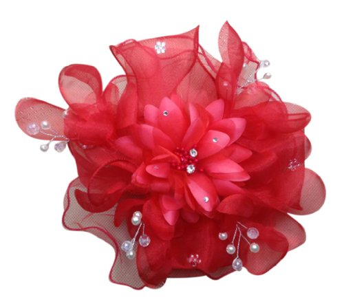 Feather Zicon And Polyester Fascinator Flowers On A Clip And Brooch Headband (Red)
