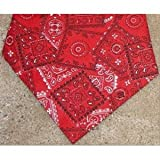 Miracool Dog Bandanas - Help Protect Your Dog From the Summer Heat Stress - Red Bandana