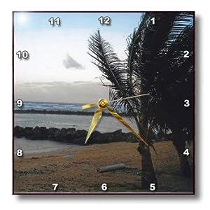 3dRose LLC Hawaii Tropical View 10 by 10-Inch Wall Clock