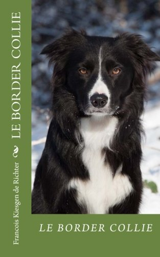 le-border-collie-chiens-de-race