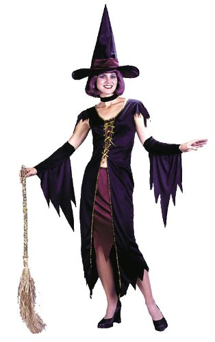 Witchy Classic Witch Sexy Womens Costume One Size