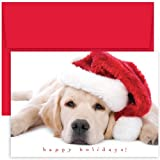 Hortense B Hewitt Holiday Greetings, Santa Puppy, Box of 18