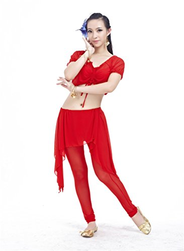 Dreamspell 2014 Dance Costume Red Transparent indian belly set best gift