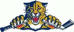 Florida Panthers NHL Hockey Bumper Sticker 6\