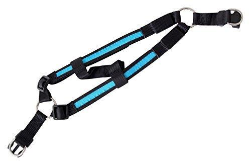 Geschirr-LED-Hundegeschirr-Leuchthalsband-Leuchtgeschirr-Brustgeschirr-in-der-Farbe-blau-M-Sicherheitsgeschirr-inkl-Batterie-Hund-Katze-Haustier-von-der-Marke-PRECORN