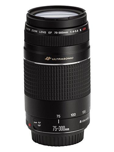 Canon Telephoto Lens