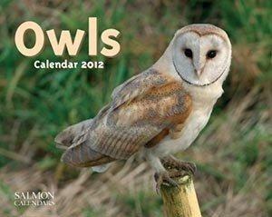 2012 Regional Calendars: Owls - 12 Month - 24.8x19.7cm