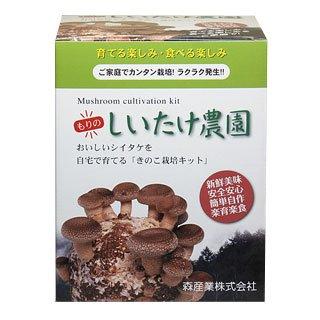 シイタケ栽培キット 【もりのしいたけ農園】