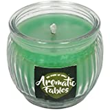 First Row Aromatic Fables 7oz Jasmine Fragrance Soy Wax Decorative Gifting Green Color Round Glass Candle