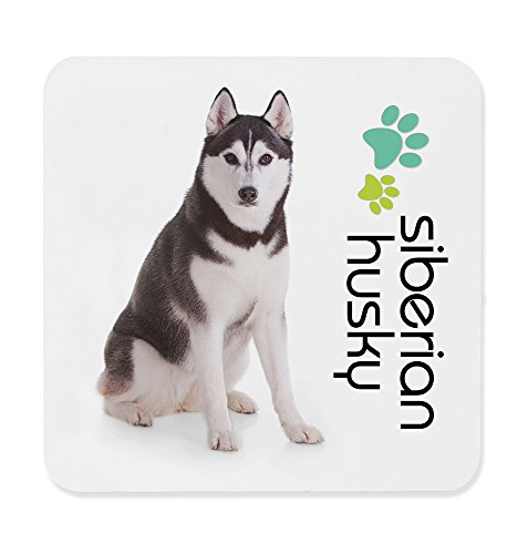 Dimension 9 Siberian Husky Coaster, White