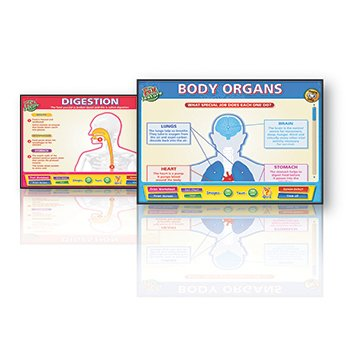 BODY ORGAN INTERACTIVE WHITEBOARDS