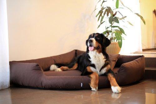 Bild von: TR5-01 Hundebett TRIVIA Eckbett Eckhundebett Hundesofa Hundebett Gr. XL 120cm Braun