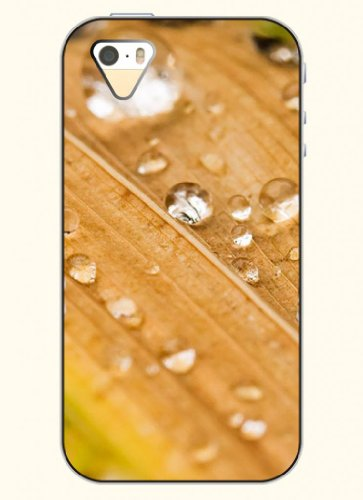 Oofit Phone Case Design With Transparent Water Drops And Leaves For Apple Iphone 4 4S 4G front-491533