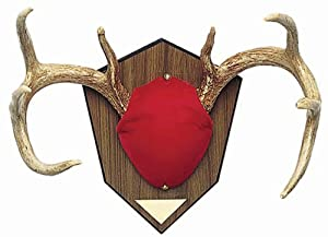 San Angelo Antler Mounting Kit, Red