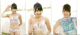 AKB48 公式生写真 ラブラドール・レトリバー 封入生写真 3種 コンプ 【入山杏奈】
