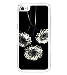 White Flowers 2D Hard Polycarbonate Designer Back Case Cover for Apple iPhone 5C