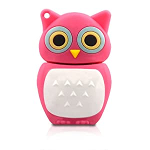 No16500020016 HI-SPEED USB-STICK 16GB SPEICHER NACHT VOGEL EULE ROSA 3D FIGUR