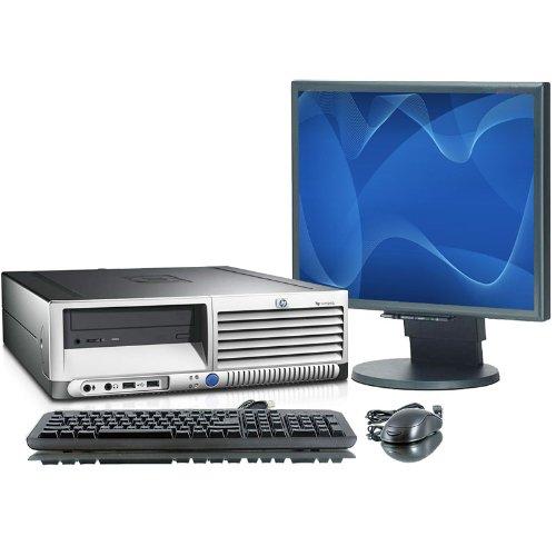 Hp 256MB Professional Video Card dc7600 dc7700 dc7800 dc7900 Dual Monitor VGA
