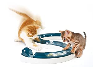 Hagen Catit Design Senses Play Circuit, Original