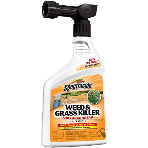 spectracide-96024-weed-and-grass-killer-concentrate-ready-to-spray-32-ounce-pack-of-1