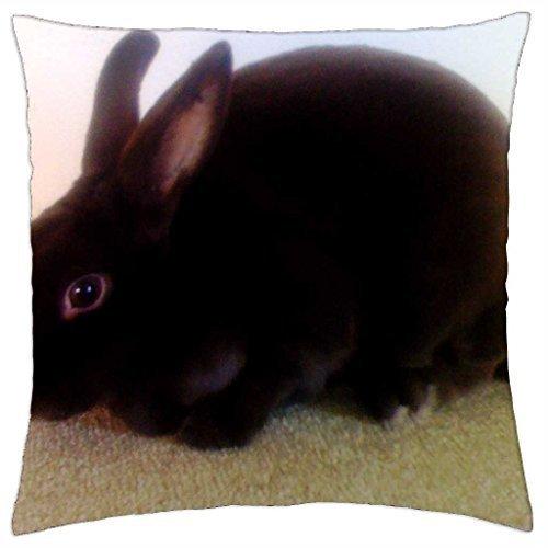 godiva-chocolate-for-bonnie-throw-pillow-cover-case-16
