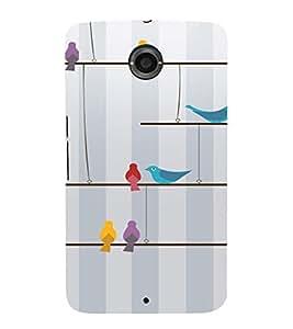 PrintVisa Colorful Birds Design 3D Hard Polycarbonate Designer Back Case Cover for Motorola Motorola Google Nexus 6