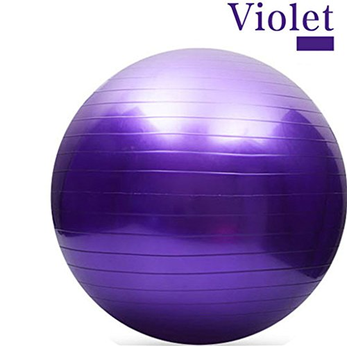 65CM Gym Fitness Ball, H&Z Exercise Pilates Balance Swiss Yoga Gym Fitness Ball Aerobic Abdominal Aerobic Abdominal Static Strength Exercise Stability Ball (Purple)