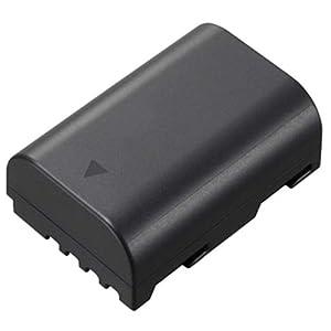 Panasonic Lumix DMC-GH3 Digital Camera Battery Lithium-Ion 7.2V 2100mAh - Replacement for Panasonic DMW-BLF19E Battery