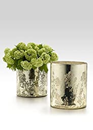 Light Gold Vases, Set of 2