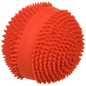 PETCO Spiney Ball Latex Squeaky Dog Toy