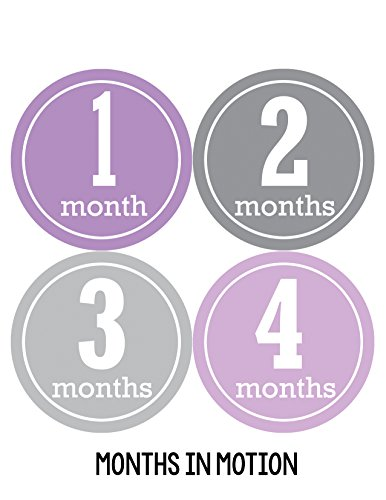 Months in Motion 164 Monthly Baby Stickers Baby Girl Month 1-12 Milestone Sticker