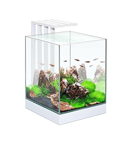 acquario-askoll-nexus-pure-cube-25-29x29x38h-con-15-led