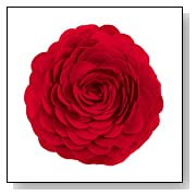 Red Rose Round Decorative Throw Pillow