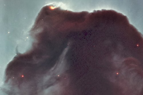 New 5X7 Photo: Horsehead Nebula Taken By Hubble Telescope