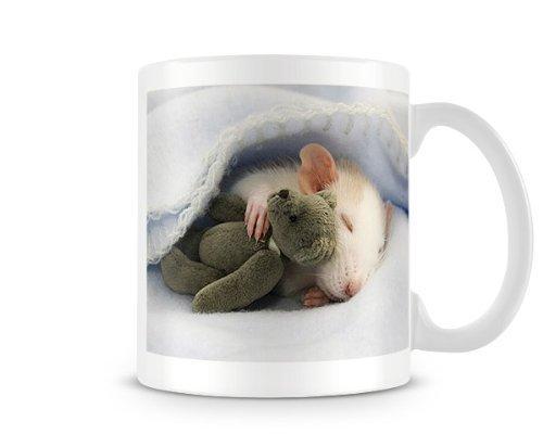 Grapefruit Cute Rat Sleeping with teddy bear Animal lovers mug humorous custom personalised mug
