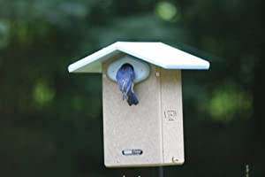 "Birds Choice Ultimate Bluebird House with 1-9/16"" Hole and Interior Camera"