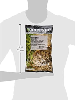 Citra Hops One Pound Pellet from Home Brew Ohio