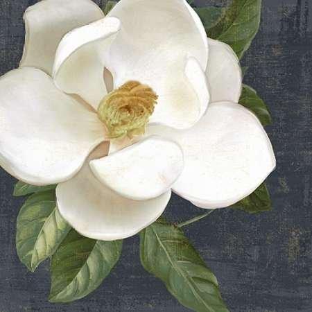 feelingathome-impresi-n-artistica-blanc-magnolia-2-cm57x57-poster-lamina-para-cuadros