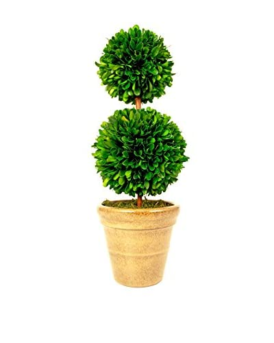Creative Displays Preserved Boxwood Double Ball Topiary, Green