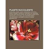 Plante Succulente: Dioscorea, Agave, Alo S, Sansevieria, Echeveria, Rose Du D Sert, Crassula, Carpobrotus, Joubarbe...