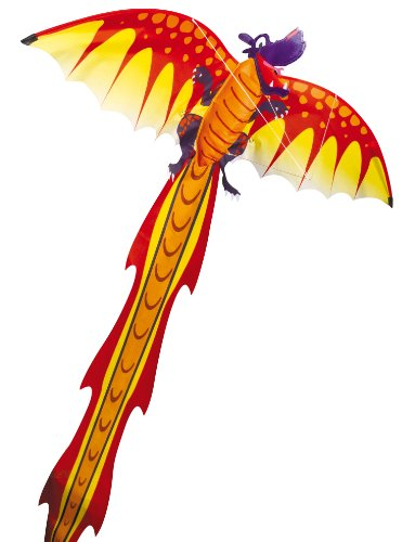 gunther-1136-jeu-de-plein-air-cerf-volant-3d-dragon