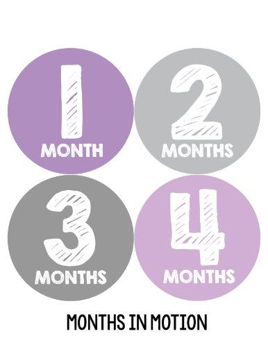 Months in Motion 101 Monthly Baby Stickers Baby Girl Milestone Age Sticker Photo