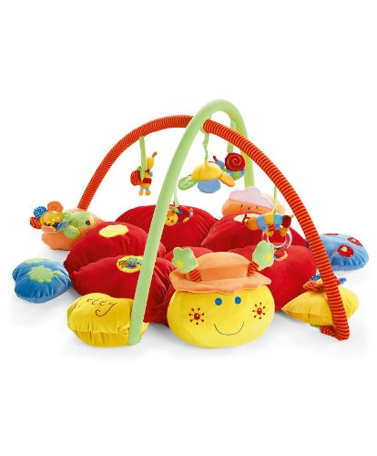 Baby Playmat Gym