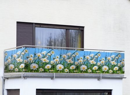 """Balkon-Sichtschutz WENKO """"Gänseblümchen"""""""